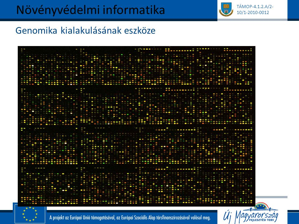 Genomika kialakulásának eszköze
