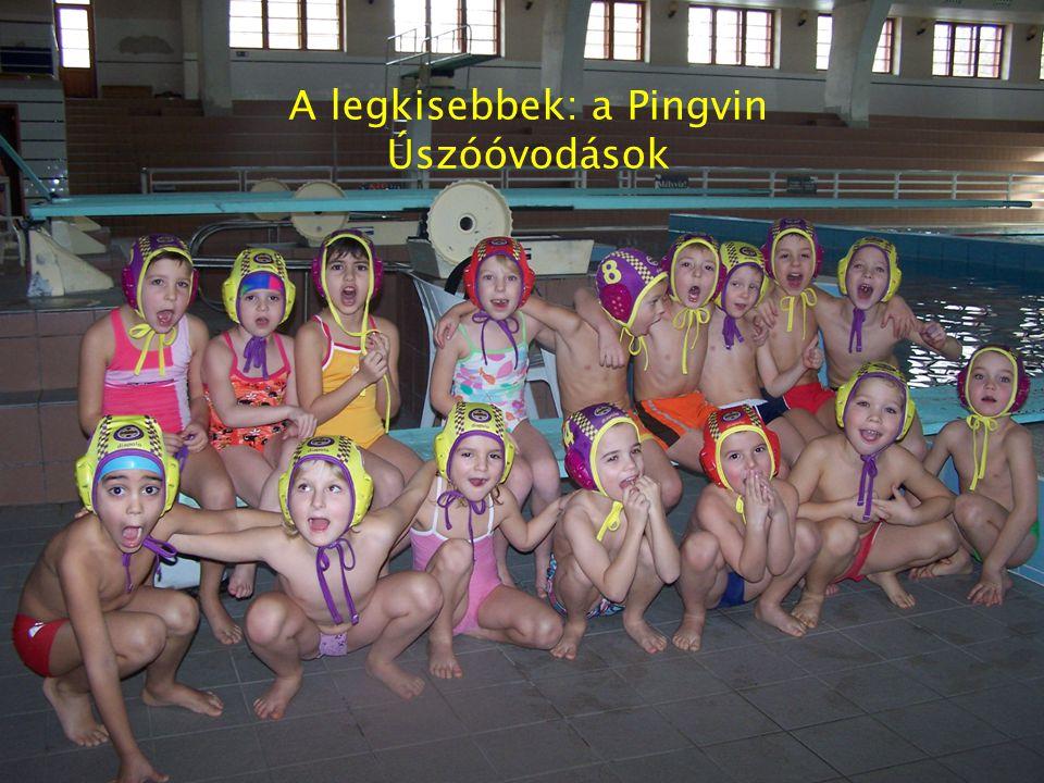 Élet az Újpest Vízilabda utánpótlás Sportegyesület