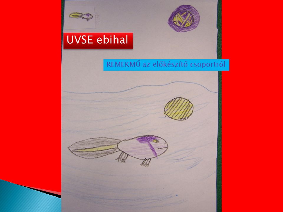 UVSE ebihal REMEKMŰ az előkészítő csoportról