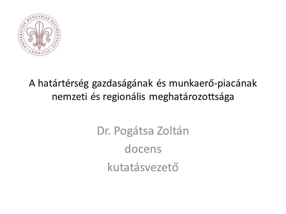 Dr. Pogátsa Zoltán docens kutatásvezető