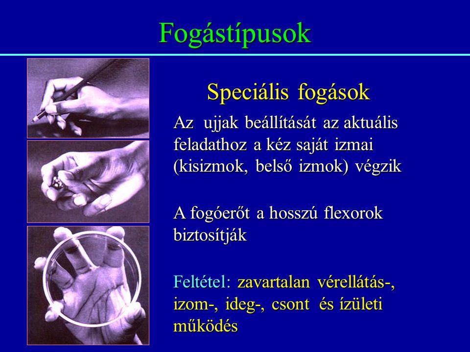 Fogástípusok Speciális fogások Az ujjak beállítását az aktuális