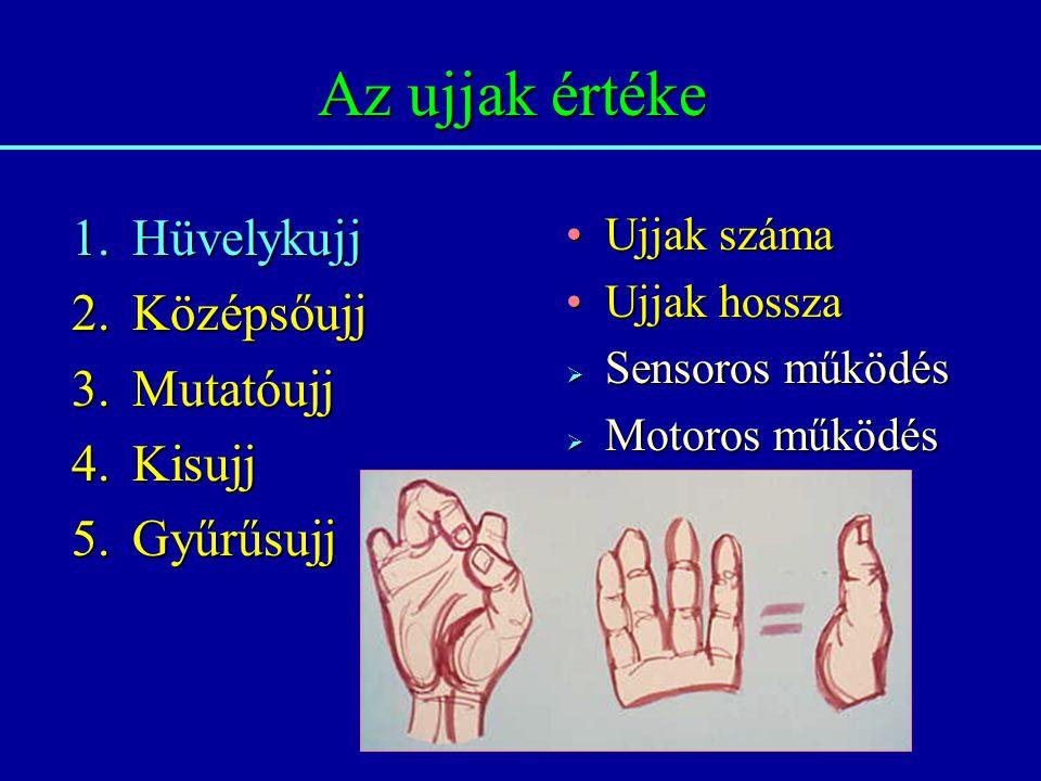 Az ujjak értéke Hüvelykujj Középsőujj Mutatóujj Kisujj Gyűrűsujj