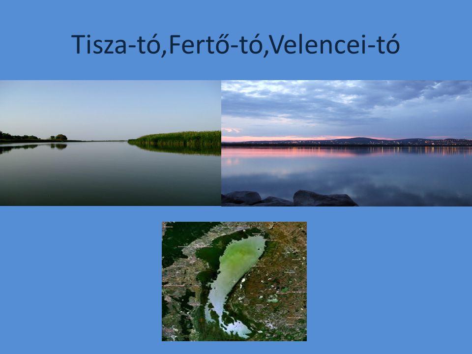 Tisza-tó,Fertő-tó,Velencei-tó