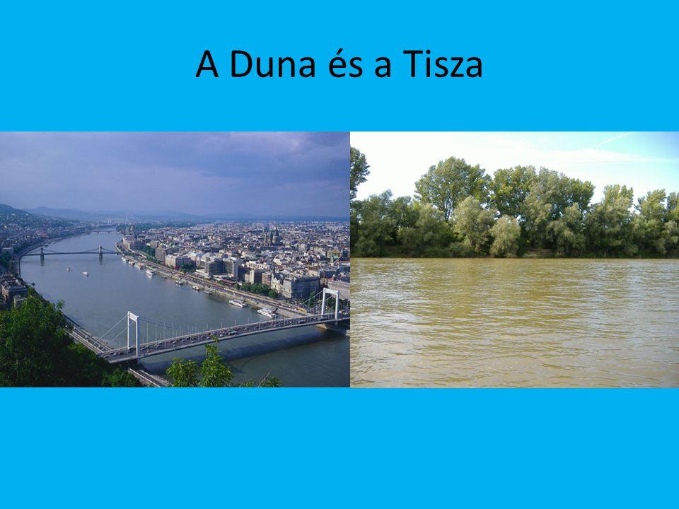 A Duna és a Tisza