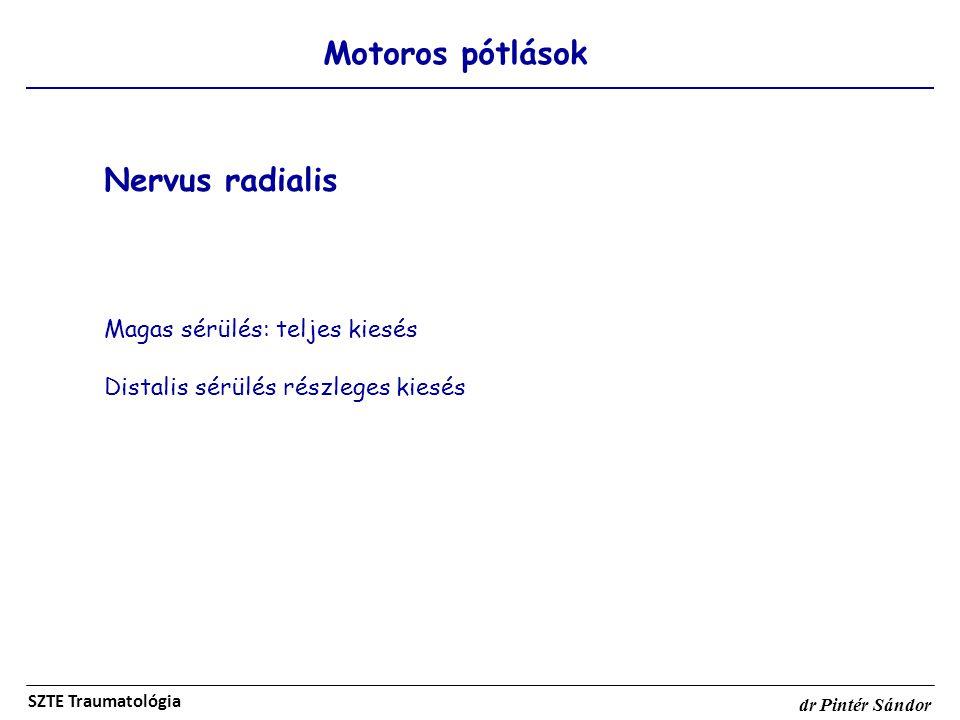 Nervus radialis Motoros pótlások Magas sérülés: teljes kiesés
