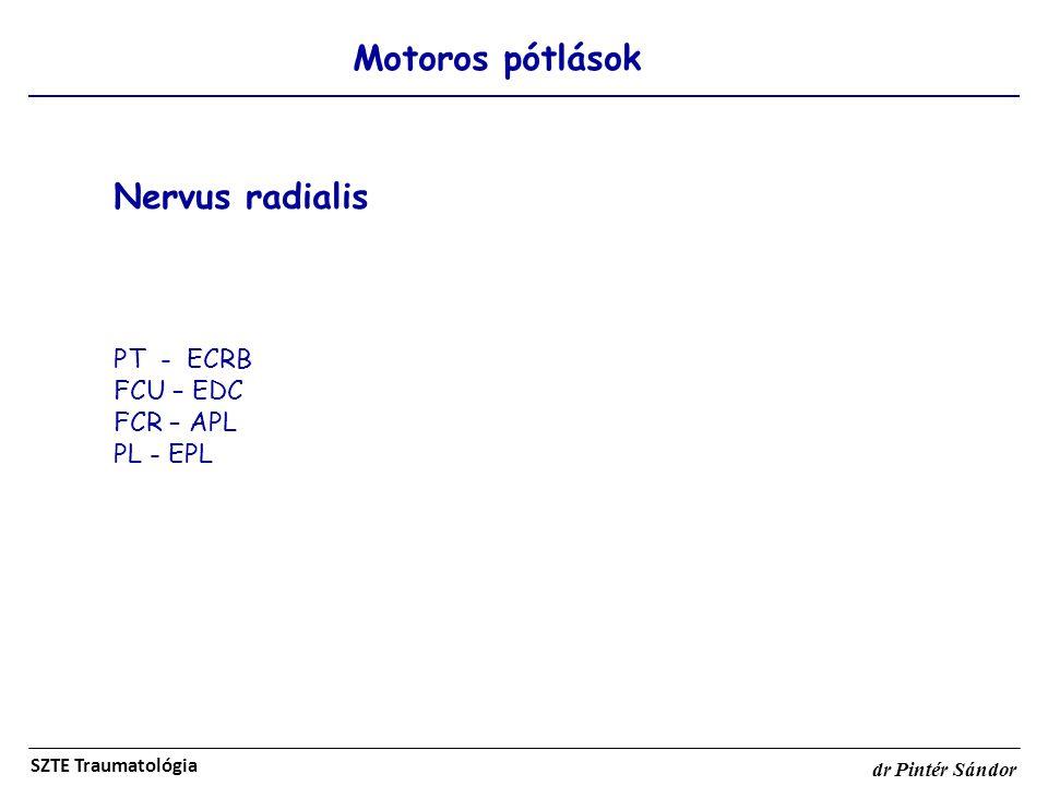 Nervus radialis Motoros pótlások PT - ECRB FCU – EDC FCR – APL