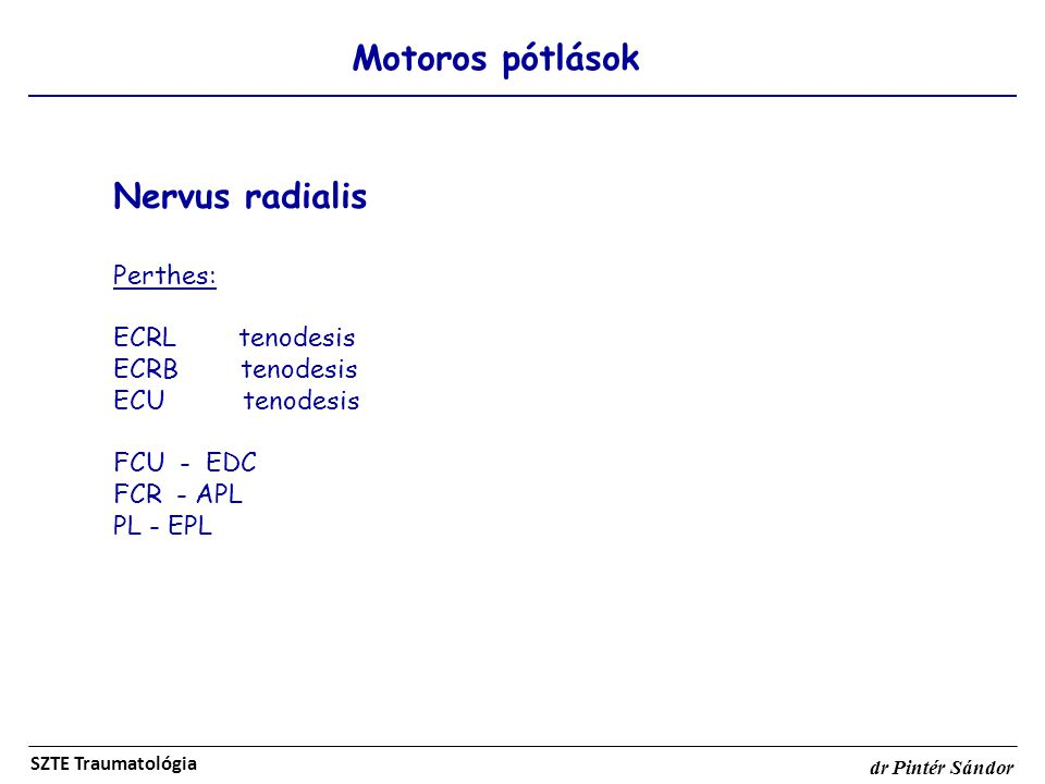 Nervus radialis Motoros pótlások Perthes: ECRL tenodesis