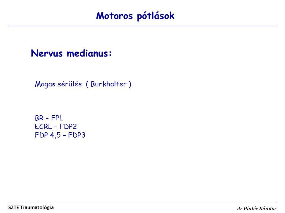 Nervus medianus: Motoros pótlások Magas sérülés ( Burkhalter )
