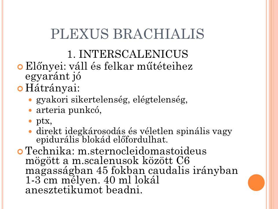 PLEXUS BRACHIALIS 1. INTERSCALENICUS