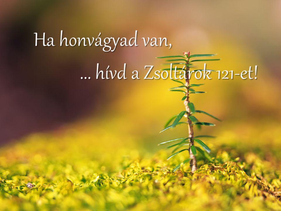 Ha honvágyad van, ... hívd a Zsoltárok 121-et!
