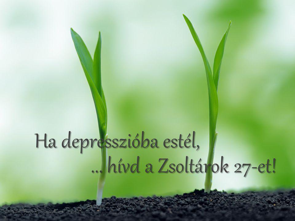 Ha depresszióba estél, ... hívd a Zsoltárok 27-et!