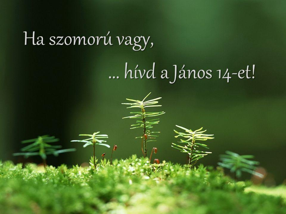 Ha szomorú vagy, ... hívd a János 14-et!