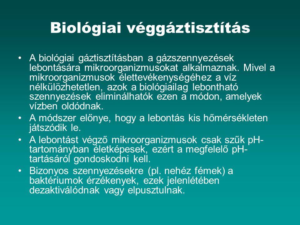 Biológiai véggáztisztítás
