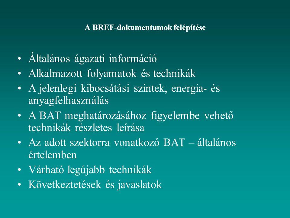 A BREF-dokumentumok felépítése