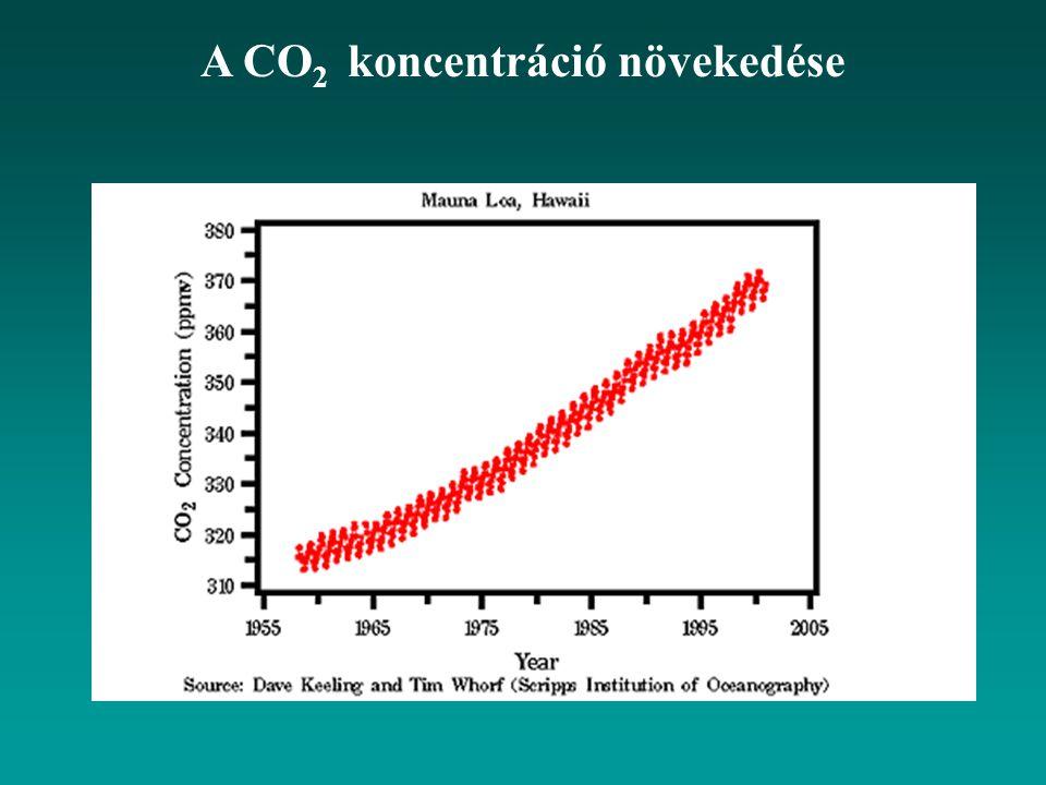 A CO2 koncentráció növekedése