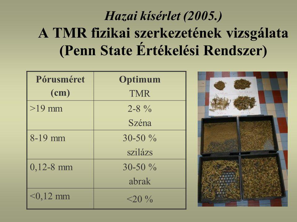 Hazai kísérlet (2005.) A TMR fizikai szerkezetének vizsgálata (Penn State Értékelési Rendszer)
