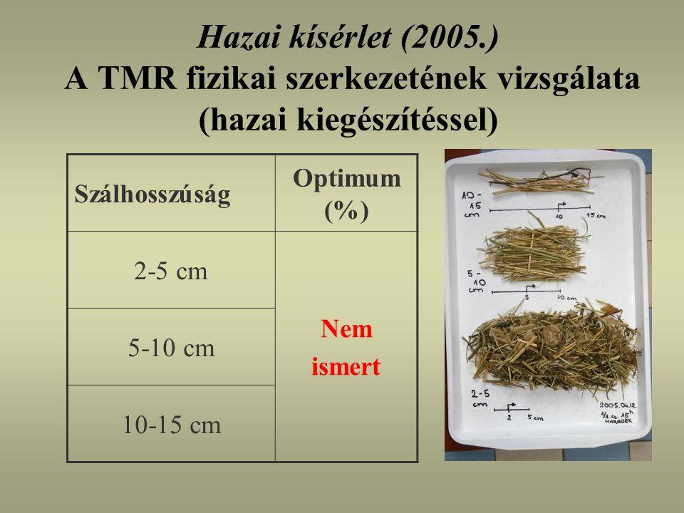 Hazai kísérlet (2005.) A TMR fizikai szerkezetének vizsgálata (hazai kiegészítéssel)