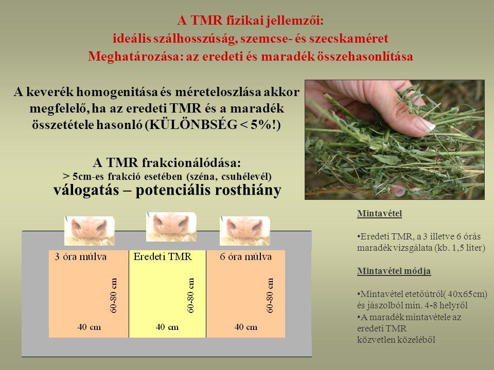 A TMR fizikai jellemzői:
