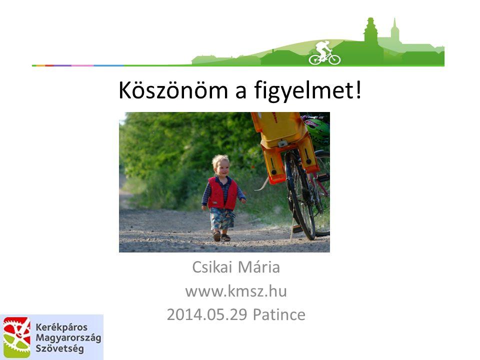 Csikai Mária www.kmsz.hu 2014.05.29 Patince