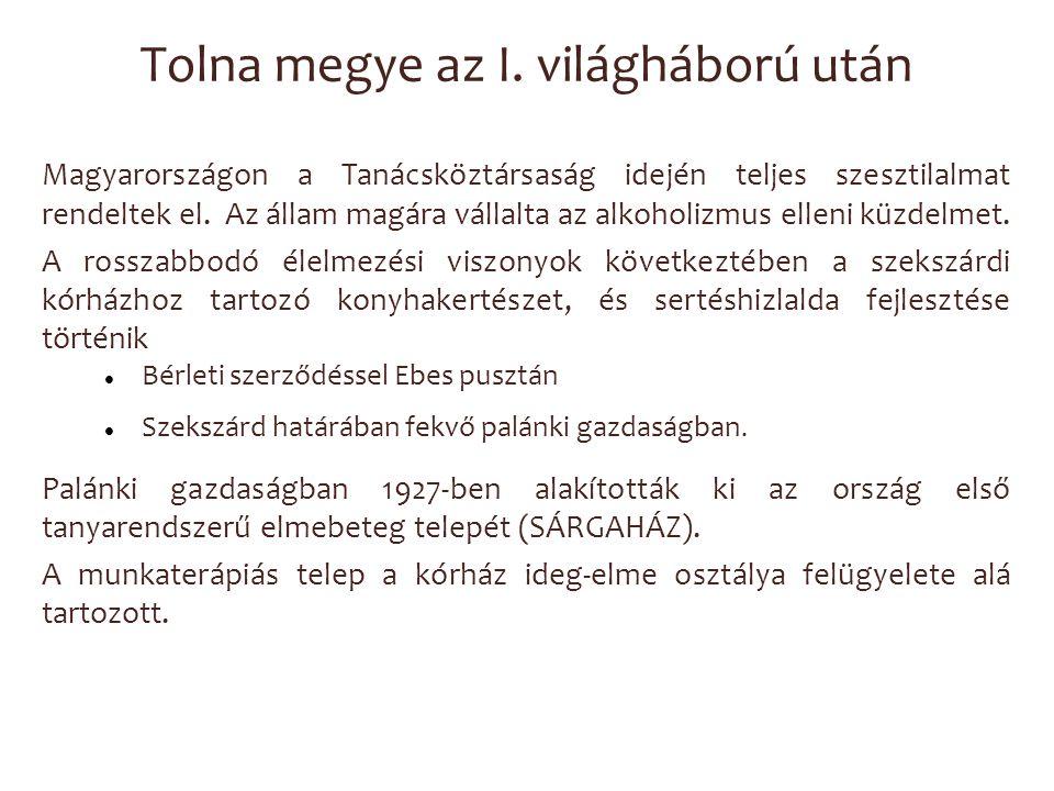 Tolna megye az I. világháború után