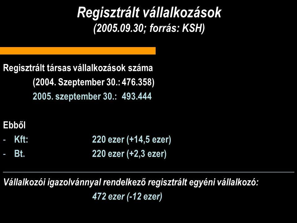 Regisztrált vállalkozások (2005.09.30; forrás: KSH)