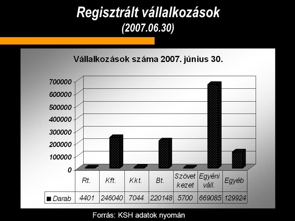 Regisztrált vállalkozások (2007.06.30)