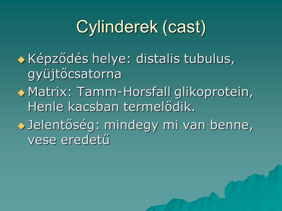 Cylinderek (cast) Képződés helye: distalis tubulus, gyüjtőcsatorna