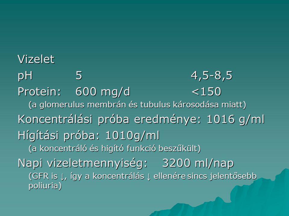 Koncentrálási próba eredménye: 1016 g/ml Hígítási próba: 1010g/ml