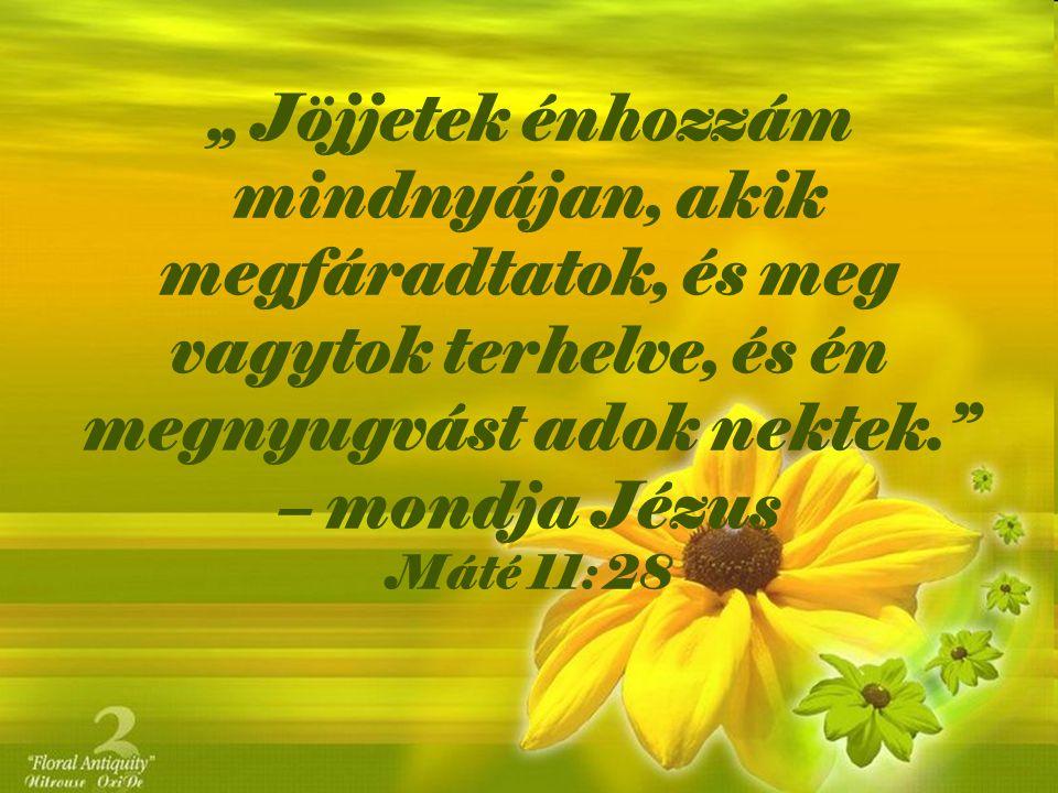 """"""" Jöjjetek énhozzám mindnyájan, akik megfáradtatok, és meg vagytok terhelve, és én megnyugvást adok nektek. – mondja Jézus Máté 11: 28"""