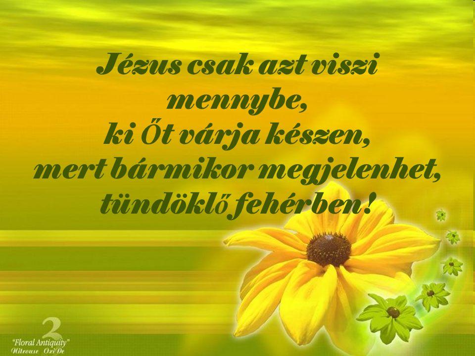 Jézus csak azt viszi mennybe, ki Őt várja készen, mert bármikor megjelenhet, tündöklő fehérben!