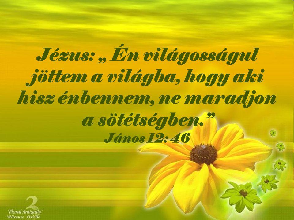 """Jézus: """" Én világosságul jöttem a világba, hogy aki hisz énbennem, ne maradjon a sötétségben. János 12: 46"""