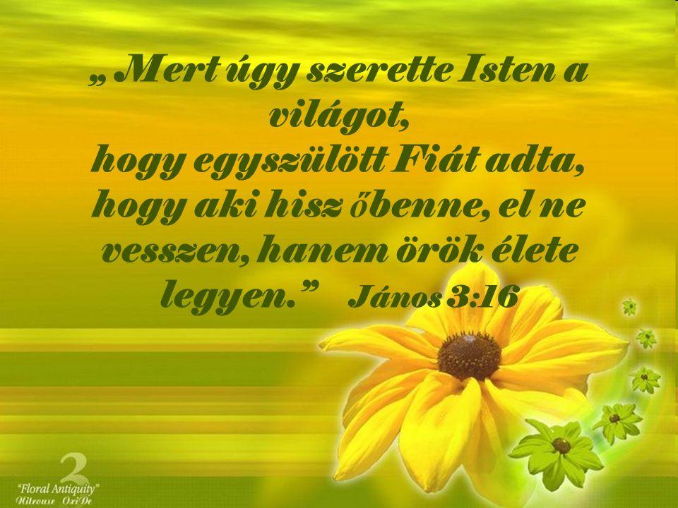 """"""" Mert úgy szerette Isten a világot, hogy egyszülött Fiát adta, hogy aki hisz őbenne, el ne vesszen, hanem örök élete legyen. János 3:16"""