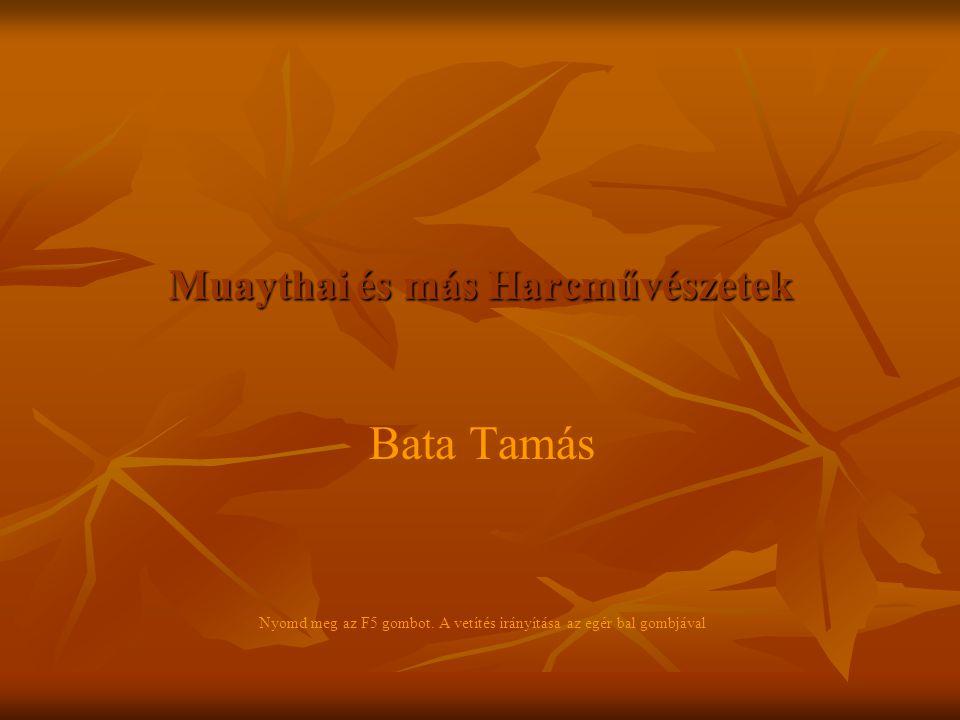 Muaythai és más Harcművészetek