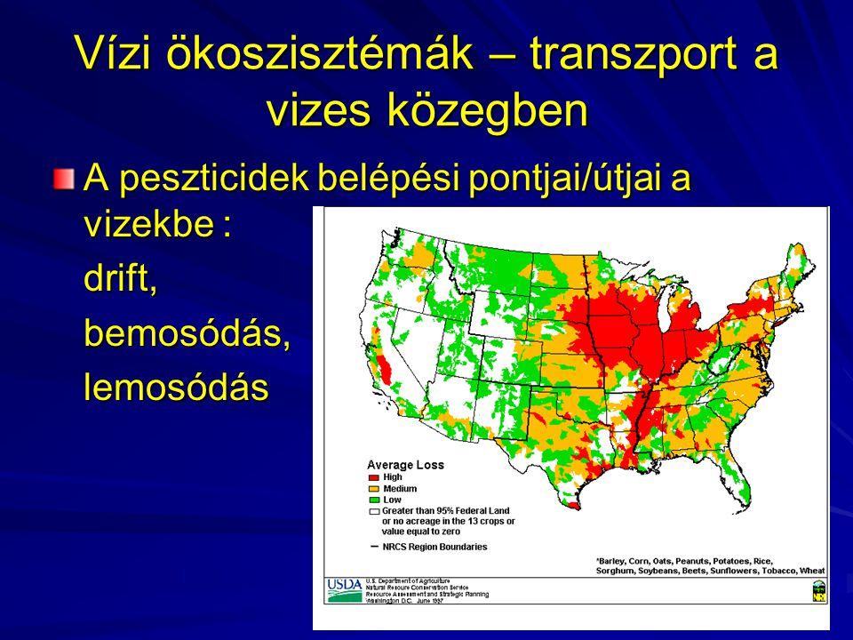 Vízi ökoszisztémák – transzport a vizes közegben