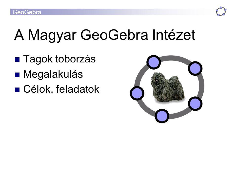 A Magyar GeoGebra Intézet
