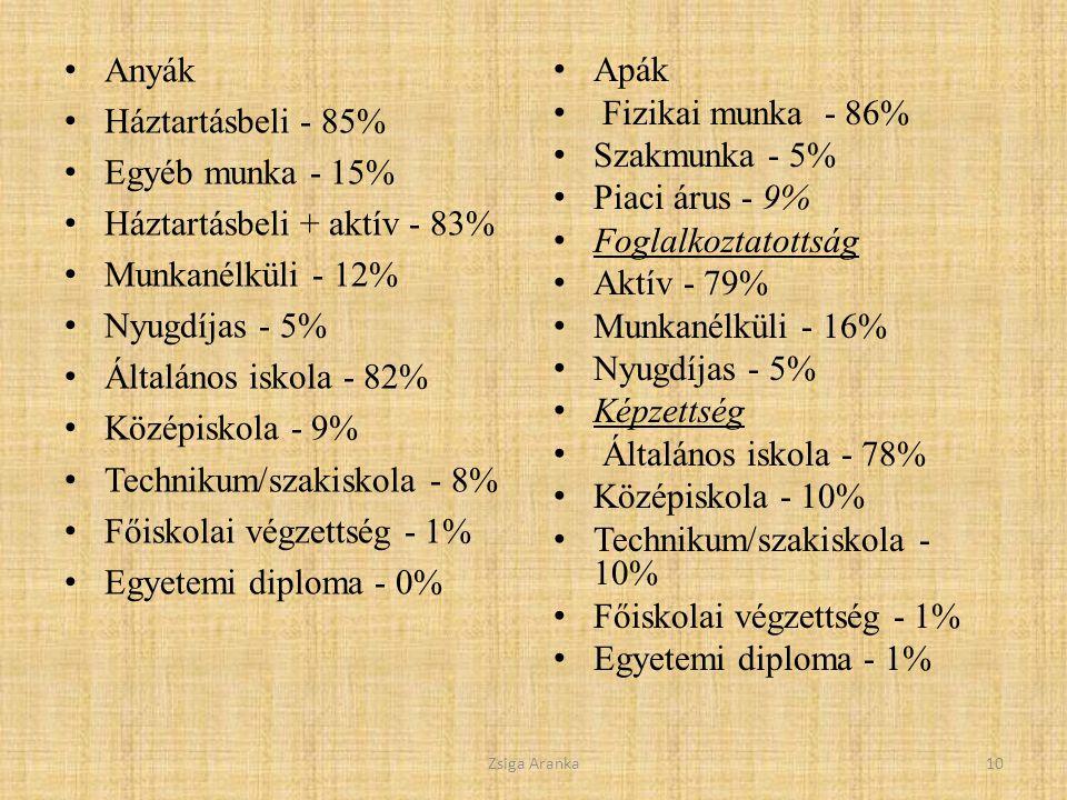 Háztartásbeli + aktív - 83% Munkanélküli - 12% Nyugdíjas - 5%