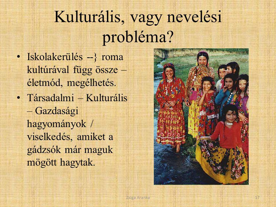 Kulturális, vagy nevelési probléma