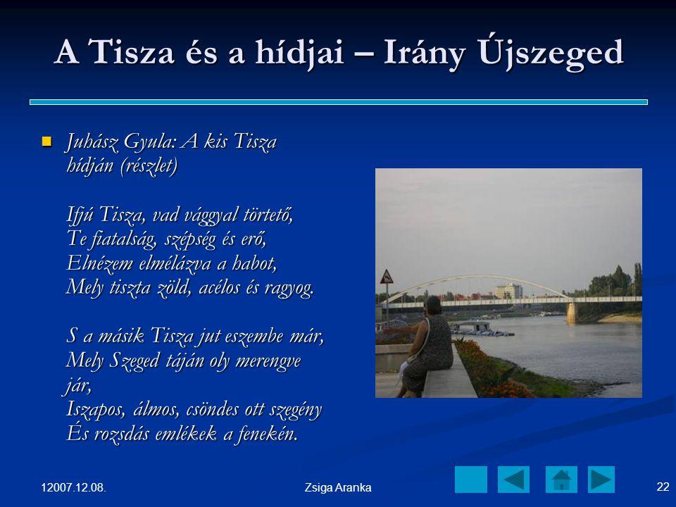 A Tisza és a hídjai – Irány Újszeged