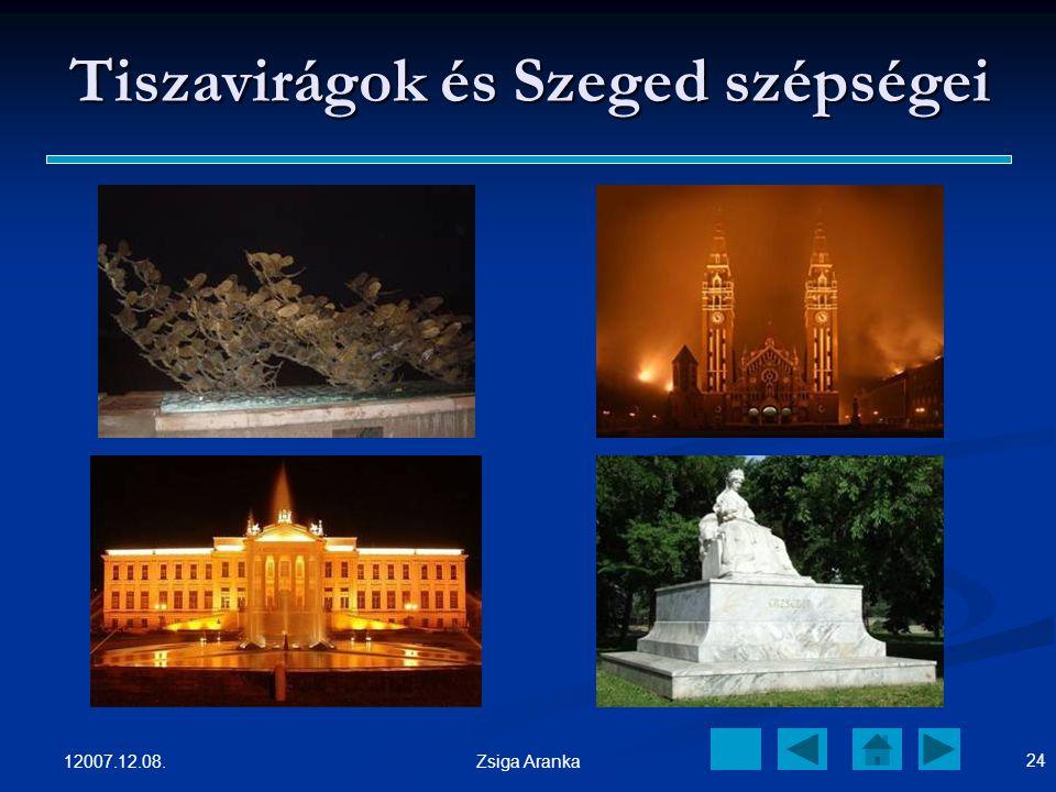Tiszavirágok és Szeged szépségei