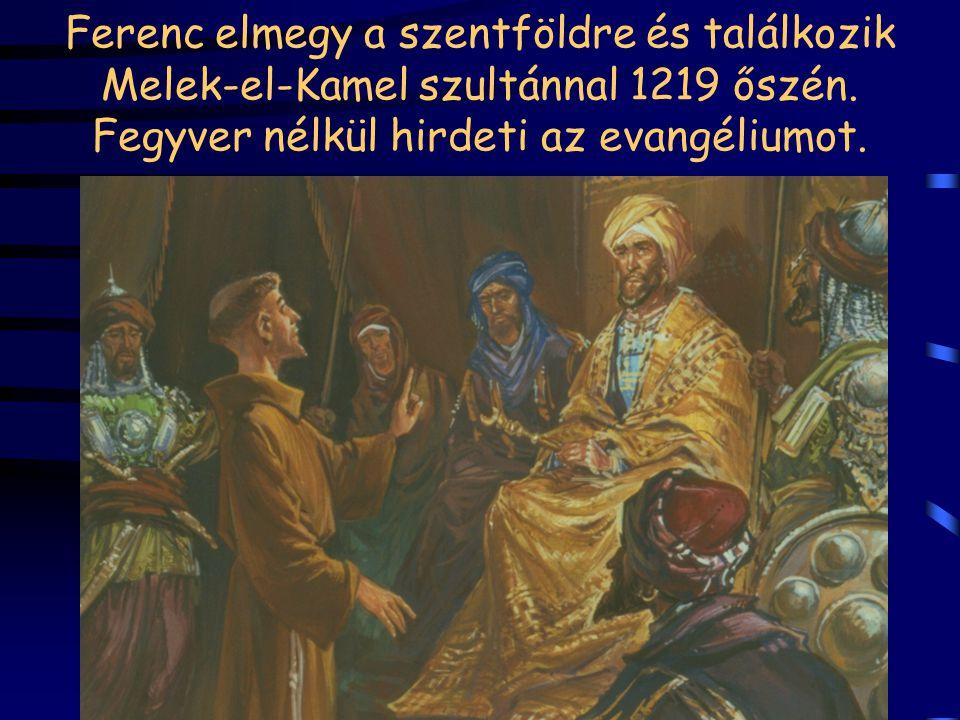 Ferenc elmegy a szentföldre és találkozik Melek-el-Kamel szultánnal 1219 őszén.