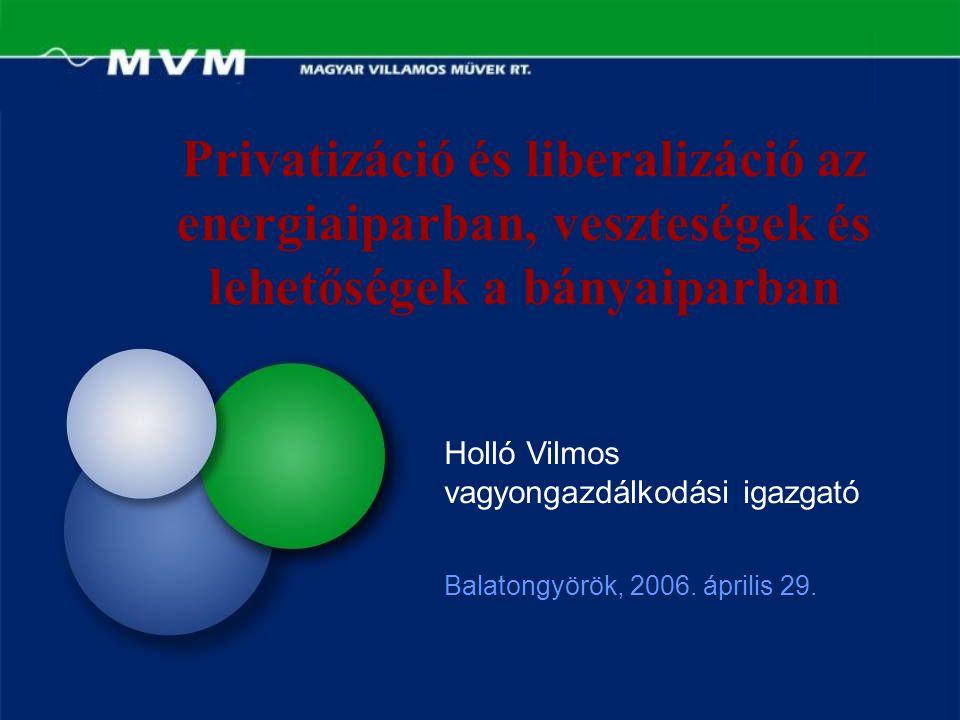Privatizáció és liberalizáció az energiaiparban, veszteségek és lehetőségek a bányaiparban