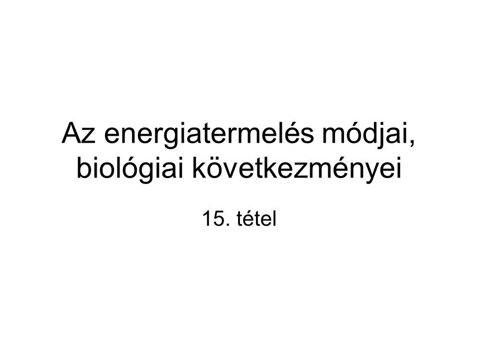 Az energiatermelés módjai, biológiai következményei