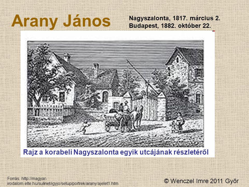 Arany János Rajz a korabeli Nagyszalonta egyik utcájának részletéről