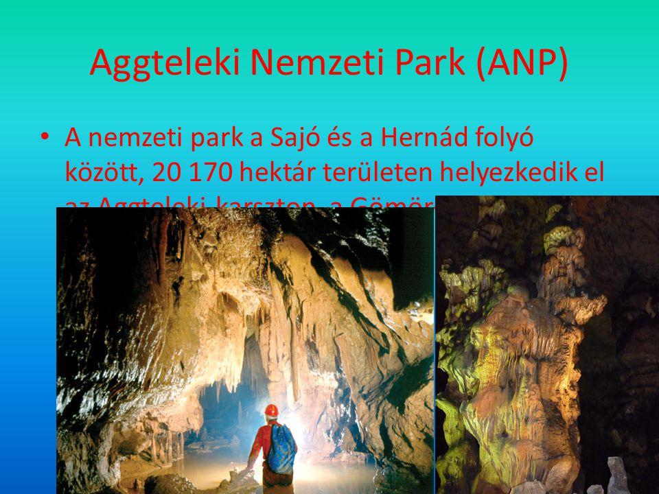 Aggteleki Nemzeti Park (ANP)