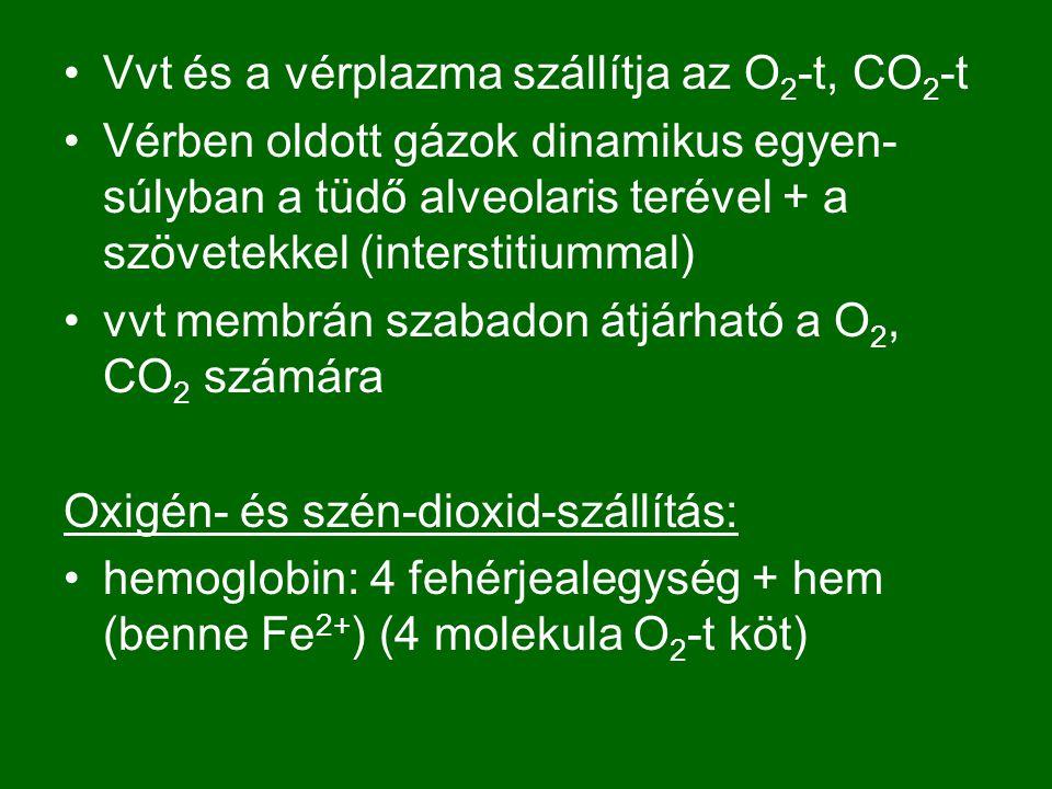Vvt és a vérplazma szállítja az O2-t, CO2-t