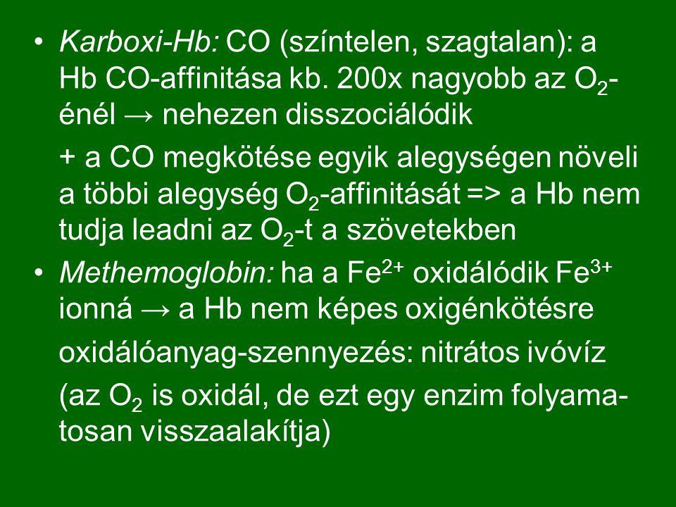 Karboxi-Hb: CO (színtelen, szagtalan): a Hb CO-affinitása kb