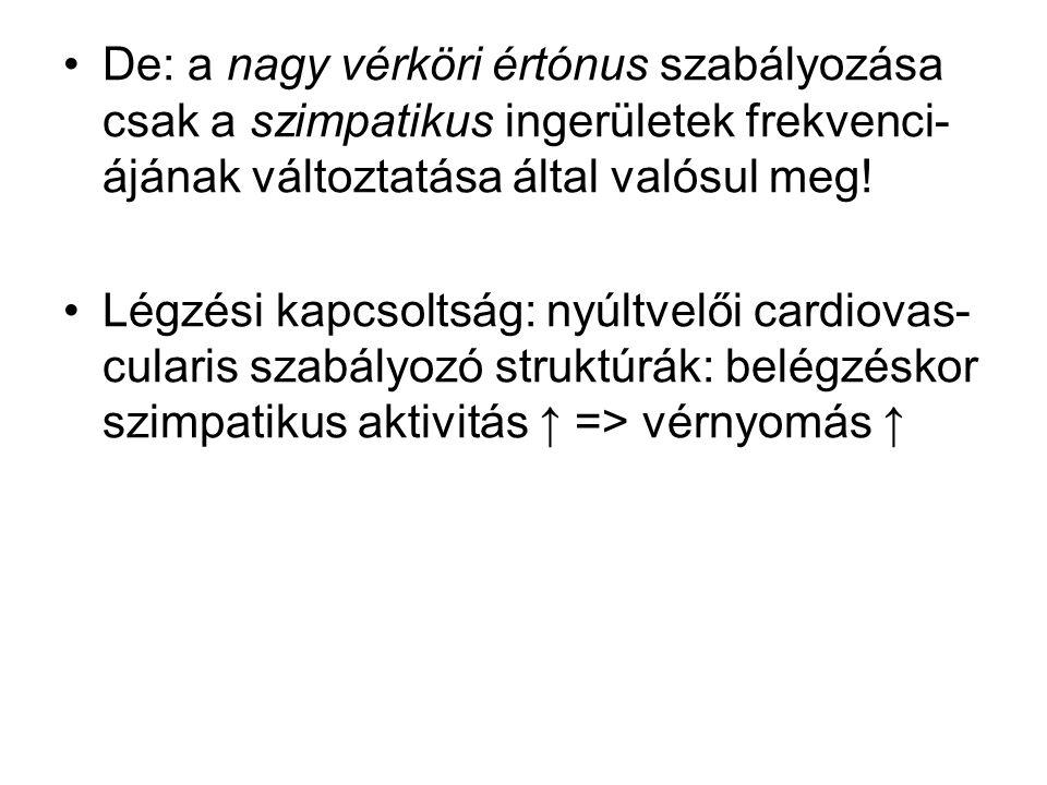 De: a nagy vérköri értónus szabályozása csak a szimpatikus ingerületek frekvenci-ájának változtatása által valósul meg!