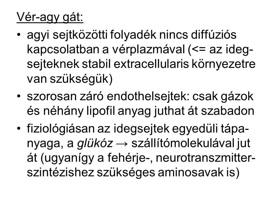 Vér-agy gát: