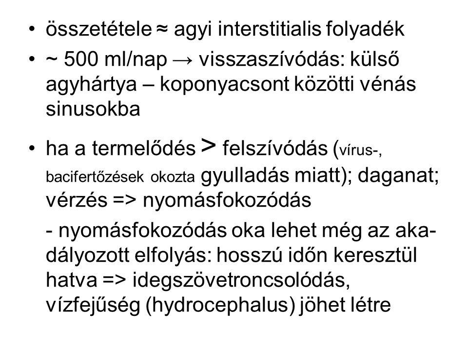 összetétele ≈ agyi interstitialis folyadék