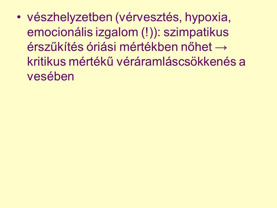 vészhelyzetben (vérvesztés, hypoxia, emocionális izgalom (